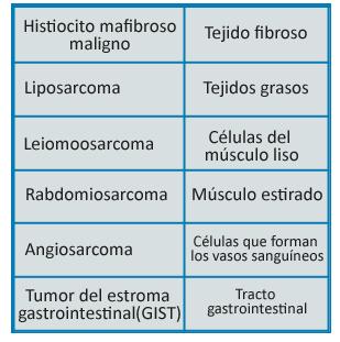 Sarcomas de partes blandas